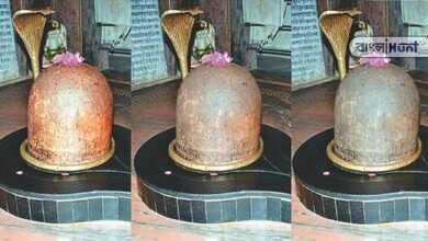 Photo of ব্যর্থ হয়েছে বিজ্ঞানও! দিনে তিন বার রং বদলায় রহস্যময় শিবলিঙ্গ, রইল রহস্যে ভরা ইতিহাস