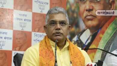 "Photo of দিলীপের বদলে বিজেপির রাজ্য সভাপতি হচ্ছে 'বাংলার মেয়ে"", জোর গুঞ্জন রাজ্য রাজনীতিতে"