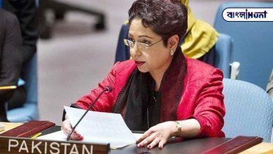 Photo of '২০ বছর ধরে টাকা চুরি করছেন' : পাকিস্তানি প্রতিনিধিকে নিগ্রহ পাক নাগরিকের