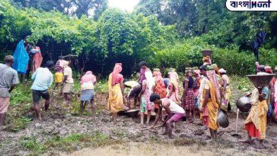 Photo of একশো দিন প্রকল্পের টাকা আত্মসাতের অভিযোগ তৃণমূল পরিচালিত পঞ্চায়েতের বিরুদ্ধে