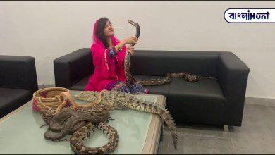 Photo of মোদীর গায়ে সাপ কুমির ছাড়বে বলে ভয় দেখিয়েছিল পাকিস্তানি গায়িকা, এবার যেতে চলেছে দুবছরের জেলে