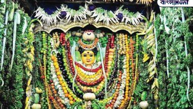 Photo of নিষ্ঠা ভরে উপাসনা করুন মা শাকম্ভরীর, মানবজীবনের দূর হবে খাদ্য কষ্ট