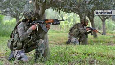 Photo of জম্মু ও কাশ্মীরে নিরাপত্তা বাহিনীর সঙ্গে গুলি লড়াই, নিকেশ ৩ জঙ্গি