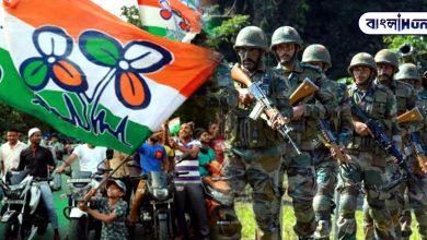 Photo of তৃণমূলের মিছিলে বাইক নিয়ে ঢোকায় গণপিটুনি BSF জওয়ানকে