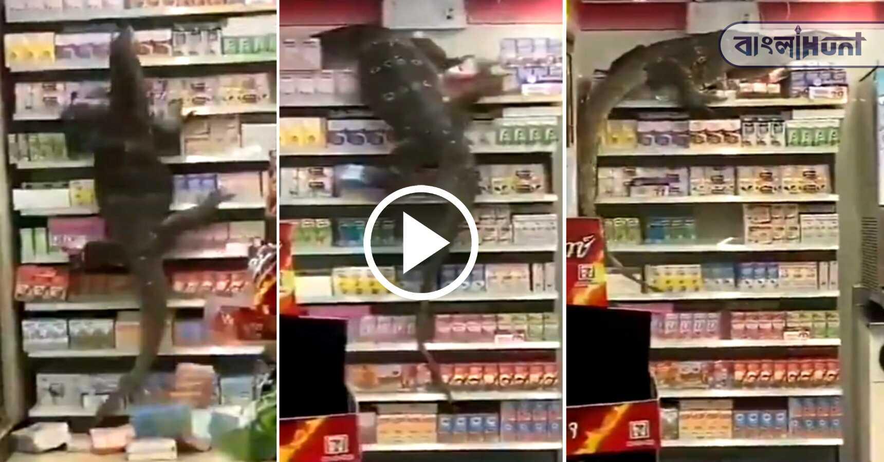 lizard enter a shopping mall on Thailand: viral video