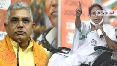 Photo of 'পাগল ছাড়া মমতা ব্যানার্জিকে কেউ বিশ্বাস করেন না'- মুখ্যমন্ত্রীকে কটাক্ষ দিলীপ ঘোষের