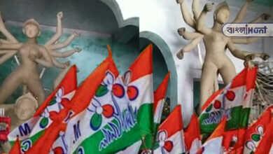 Photo of দুর্গাপুজো নিয়েও তৃণমূলের গোষ্ঠীদ্বন্দ্ব! এক মন্দিরে দুটি প্রতিমা ঘিরে উত্তাল তেহট্ট
