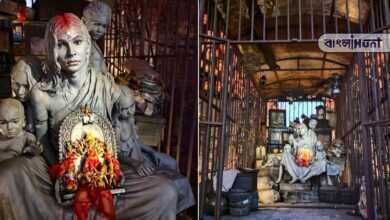 Photo of দেশ ভাগের স্মৃতি উস্কে থিম পুজো, সবার নজর কাড়ছে কলকাতার ক্লাব