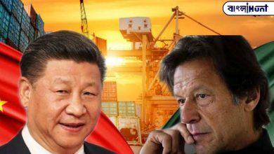 Photo of এবার চীনের কাছেই থাপ্পড়! বন্ধের মুখে পাকিস্তানে চলা চীনের CPEC প্রজেক্ট !