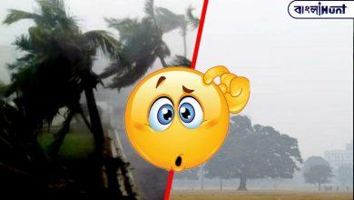 Photo of বজ্রবিদ্যুৎ সহ বৃষ্টি নাকি বাড়বে তাপমাত্রা? কেমন হবে বছরের শুরু