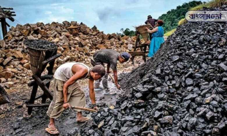 The coal crisis will end in 3-4 days: central govt