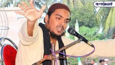 Photo of বঙ্গ রাজনীতিতে কোমর বেঁধে নামছেন আব্বাস সিদ্দিকী, ডিসেম্বরেই হবে দল ঘোষণা