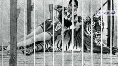 Photo of নাম ছিল সুন্দরী, খ্যাতি কুড়িয়েছিলেন বাঘকে চুমু খেয়ে, পড়ুন বিস্তারিত