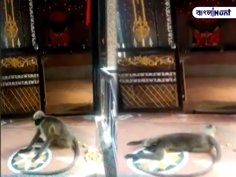 hanuman in mandir Bangla Hunt Bengali News