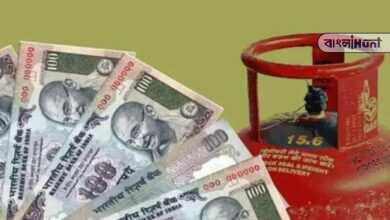 Photo of বাম্পার অফার, ১১৯ টাকায় মিলছে রান্নার গ্যাস, এইভাবে করুন বুকিং