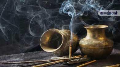 Photo of পুজোর সময় শুধু নয়, বাড়িতে রোজ ধূপ জ্বালালে তা অনেক কার্যকারী হয়- জানুন বিস্তারিত