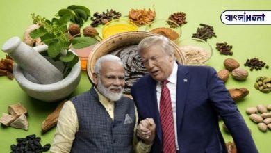 Photo of এবার আয়ুর্বেদকে করোনার অস্ত্র হিসাবে দেখেছে ভারত আমেরিকা, চলছে তারই প্রস্তুতি