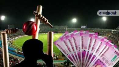 Photo of ভারতে রমরমিয়ে চলছে ক্রিকেট জুয়া, বিস্ফোরক তথ্য ফাঁস করলো ICC