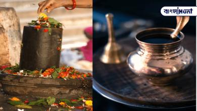 Photo of শিবলিঙ্গে দুধ ঢালার পেছনে রয়েছে পৌরাণিক ও বৈজ্ঞানিক কারণ, জানলে আপনিও হবেন হতভম্ব