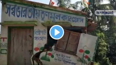Photo of Viral Video: দেখতে দেখতে জলে তলিয়ে গেল তৃণমূল কার্যালয়, বরাত জোরে রক্ষা পেল কর্মীরা